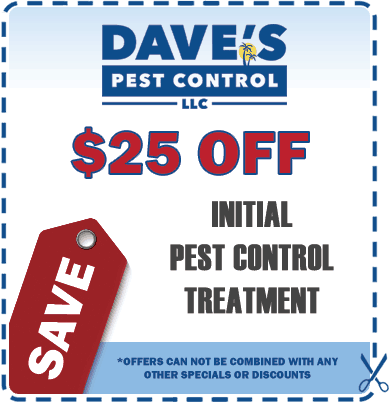 bed-bug-exterminator-coupon