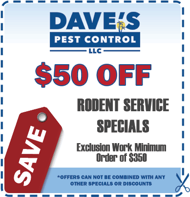 rodent-control-coupon