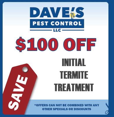 termite-exterminator-coupon
